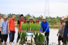 Tanah Laut distributes tools and agricultural machinery to farmers