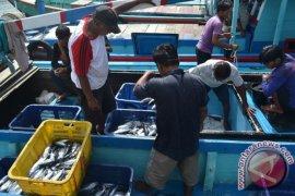 Ikan laut Bengkulu diekspor lewat daerah lain