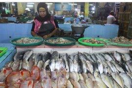 Stok Ikan Laut Tangkapan Berkurang