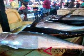 Pemkab Lebak Dorong Budi Daya Ikan Air Tawar