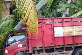 Truk bermuatan 560 tabung elpiji tabrak tiang listrik