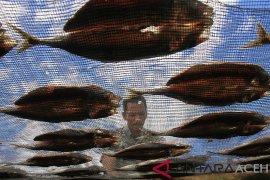 Produksi ikan asin di Aceh terkendala bahan baku