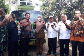 Banten Ekspor Manggis Tahap Awal Ke China 9,5 Ton