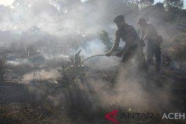 Sekitar 900 meter persegi lahan gambut terbakar di Aceh Barat