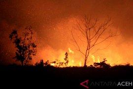 Dua hektare lebih lahan gambut terbakar di Aceh Barat