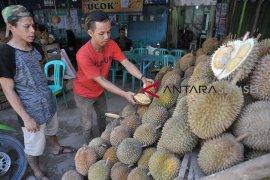 Renovasi destinasi wisata sentra durian Kuto Page 1 Small