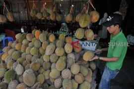 Renovasi destinasi wisata sentra durian Kuto Page 2 Small