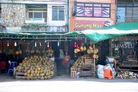 Renovasi destinasi wisata sentra durian Kuto Page 3 Small