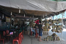 Renovasi destinasi wisata sentra durian Kuto Page 4 Small