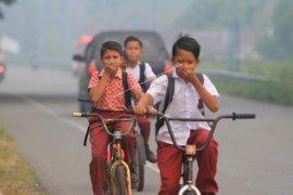 Kabut asap kebakaran lahan