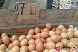 Harga daging ayam ras di Pasar Flamboyan Rp35 ribu per kilogram