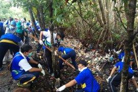PLN Bali bersihkan sampah plastik di hutan mangrove (video)
