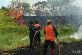 Sembilan unit damkar padamkan kebakaran lahan di Lhokseumawe