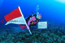 Wanita penyelam deklarasi laut bersih