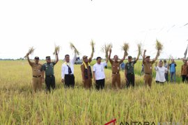 Mentan semangati petani Desa Tambak Sarinah