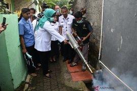 Pemkab Bogor bersama Dinkes lakukan pengasapan