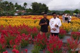 Taman Bunga Jadi Wisata Menarik Di Aceh Jaya Antara News Aceh