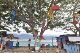 DPR Apresiasi Jepang Tawarkan Peringatan Dini Tsunami