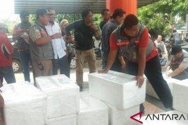 3.505 ikan Arwana Irian dikembalikan ke Merauke