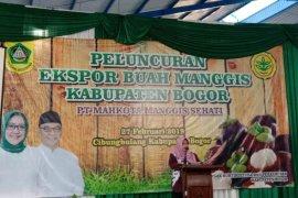 Manggis Bogor kini mendunia