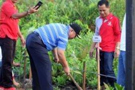 Bupati Tanjabbar ajak warga aktif tanam mangrove
