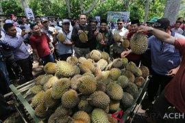 Festival durian Bener Meriah