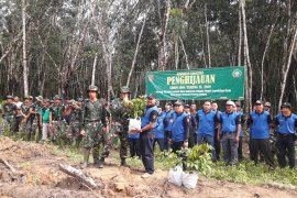 Kodim, KPH planted trees in the TMMD location