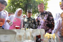 Banyuwangi dan BPPT Kolaborasi pengembangan kopi dan cokelat dari hulu ke hilir