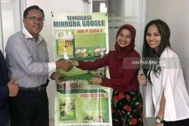 Tingkatkan produktivitas pertanian, PD Tani jalin kerja sama pemasaran Mikroba Google