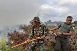 BPBD: 12 hektere lahan gambut di Nagan Raya terbakar