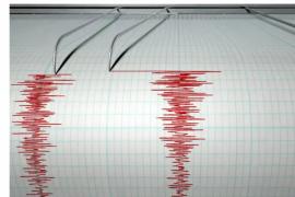 Gempa bumi 4,1 terjadi  di Manokwari