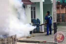 Dinkes Banjarmasin baru catat 19 korban DBD