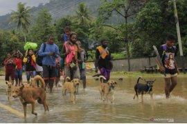 Jumlah pengungsi banjir bandang Jayapura bertambah jadi 9.580 orang