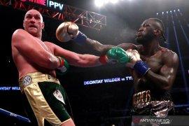 Pertahankan gelar WBC, Wilder hadapi Breazeale pada Mei