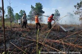 Puluhan hektare lahan gambut di Singkawang terbakar