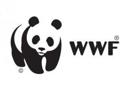 WWF sebut 25 persen air tanah desa di Indonesia tercemar