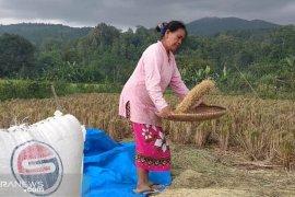 Jarot wajibkan ASN beli beras produksi Tawang Sari