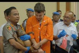 Warga Rusia penyelundup orangutan