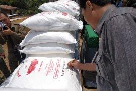 Tepung Tapioka Siluk Berantai masih untuk kebutuhan lokal
