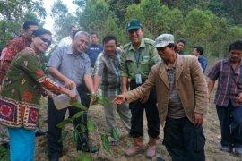 Kementerian LHK tinjau lokasi kerjasama TPL dengan masyarakat di Simalungun