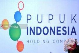 Tidak ada direksi Pupuk Indonesia terjaring OTT KPK