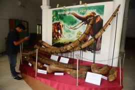 Museum situs purbakala Patiayam