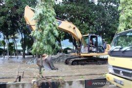 Papua prioritaskan pembangunan fasilitas relokasi pascabanjir
