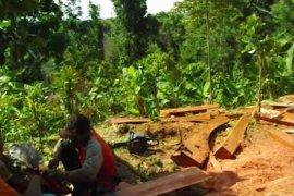 Profauna: Pembalakan liar hutan Apusan ancam kelestarian satwa langka