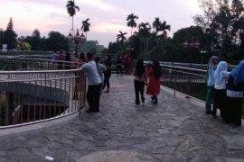 """Jelayang"" manjadi daya tarik baru Taman Anggrek Jambi"