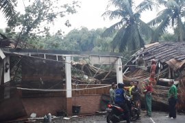 Kisah tragis karyawan rumah makan tewas tertimpa pohon tumbang