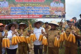 Gubernur Sumut berencana dirikan pabrik pupuk organik di Langkat