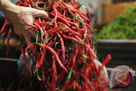 Pedagang di Ambon mulai naikan harga cabai dan bawang