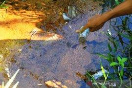 Penyebab ikan mati mendadak di sekitar PLTU Nagan Raya diduga akibat zat kimia