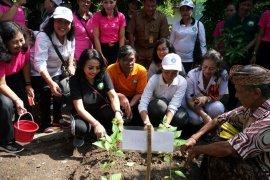 Tim Penggerak PKK Kota Denpasar berinovasi meningkatkan kesejahteraan masyarakat